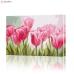 """Картина по номерам """"Поле тюльпанов"""" PBN0025, размер 30х40 см"""