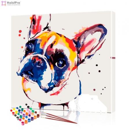 """Картина по номерам """"Цветной бульдог"""" PBN1013, размер 40х40 см"""