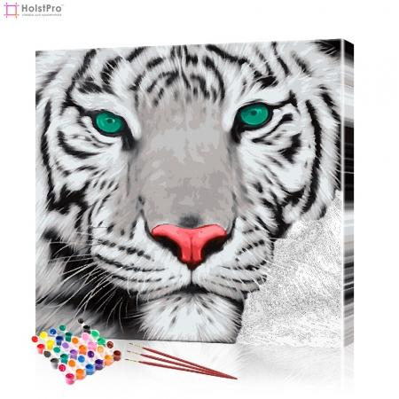 "Картина по номерам ""Белый тигр"" PBN0080, размер 40х40 см"