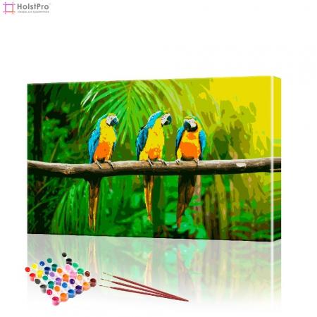 """Картина по номерам """"Попугаи"""" PBN0351, размер 40х60 см"""