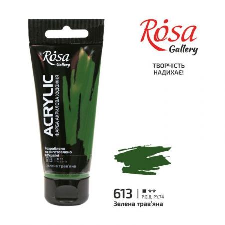 Краска акриловая, Зеленая травяная, 60мл, ROSA Gallery